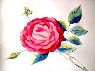 La vie en rose_AD