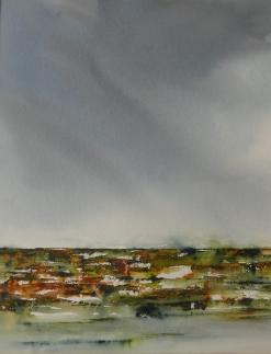 Ciel de plomb sur le marais_ 49X39